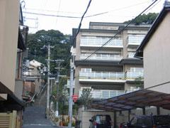 緑豊かな船岡山への眺望を侵害する船岡山マンション