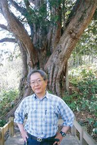 巨樹と荒川弁護士