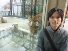 京都市動物園のトラとともに:谷弁護士