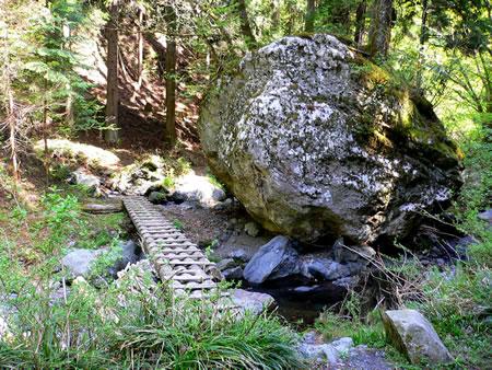二股出合の大岩と丸太橋