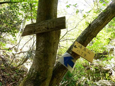 峰床山・八丁平の道しるべ(これから樹林帯を登ります)