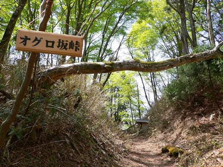 家康が逃げ延びたというオグロ坂峠-峠中央に祠が見えます