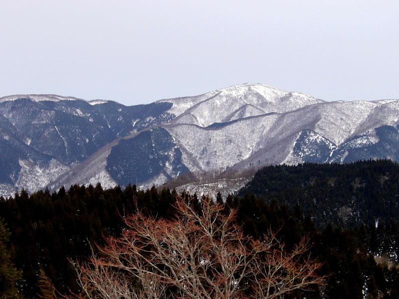 皆子山山頂から蓬莱山を望む
