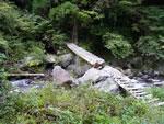 寺谷出合に架かる丸太橋