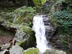 ツボクリ谷の小滝