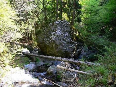 二股出合いの大岩にある木橋(ここから林道へ)