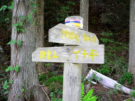 登山口にある鎌倉山への案内標識