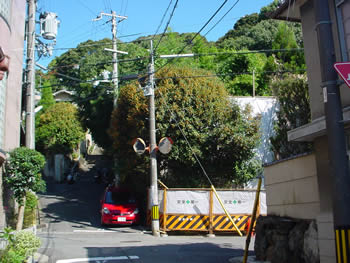 マンションにより豊かな緑の稜線が奪われた舟岡山南端