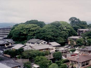 半鐘山の南側からの眺望(2003年6月)。その後、樹木が伐採されたが、和解により回復されることになった。