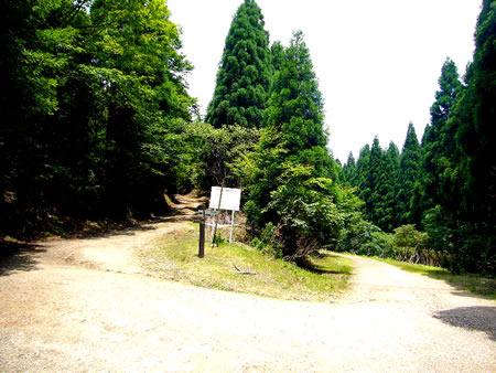 ケヤキ坂峠(左は杉尾峠へ続く林道)