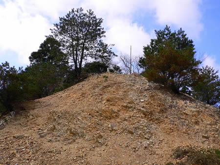 愛宕山の三角点がある小山
