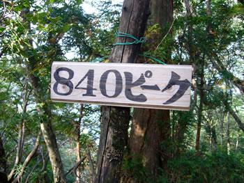 840mピーク