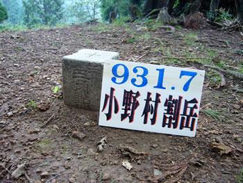 小野村割岳の▲三等三角点