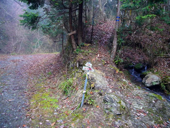 桑谷山への登山口