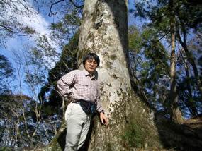 ブナの巨樹とともに